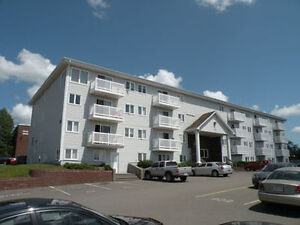 2 bedroom apt at 25 elmwood dr available now