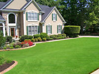 Grass cutting, Lawn mowing, Gardens, weeding, Landscaping,trees