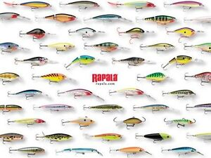 PAWN PRO'S HAS RAPALA - LIVE TARGET - MEPPS - WILLIAMS LURES