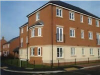 Double room available now in professional house share. Devizes. Ref ML1FR-4