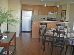 2 bedroom Condo - All inclusive