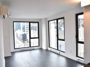 Two-Bedroom 4 1/2 Corner Unit Downtown New Condo for rent