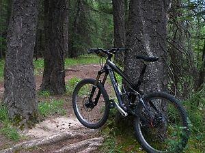 Trek Remedy 8 Mountain Bike