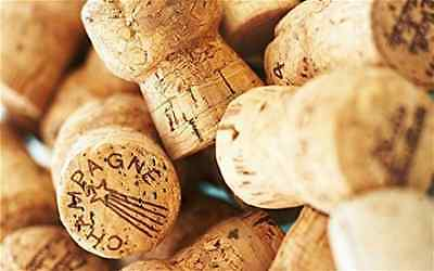 50 High Quality Champagne Corks, Great for Crafting! Wedding Corks!