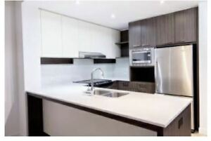 Spacious, NEW  1 bed For rent - 1 Bedroom 1 Bath  West Coquitlam