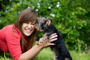 Best Dog Walking/Pet Sitting Service in Vancouver