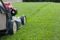 Student Lawn Mowing - Affordable Prices!