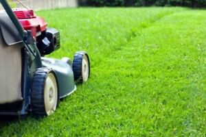 Lawn Care Sevices, Now booking new clients!