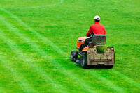Full Time Landscaping Company/Grass Cutter