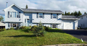 Beautiful split-entry home w 17'X 27 ft attached Garage