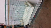 Hagen Parrot Cage on Stand with Toys and Accessories
