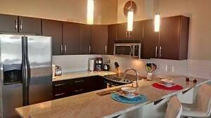 Beautifully FURNISHED Exec Condo w/ Mt. Baker view