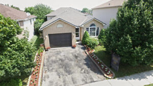 Move In Ready Detached 4 Level Back Split Walking Distance To Sp