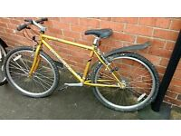 "Diamondback ""Sorrento"" mountain bike MTB bicycle"