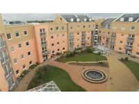 Modern 1 Bedroom apartment fully furnished with white goods/two beds - Feltham, Heathrow, London