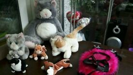 BUNDLE OF CAT SOFT TOYS .TY BEANIES AND CAT OUTFIT