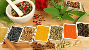 Weight loss 2-4LB per day by Ayurveda