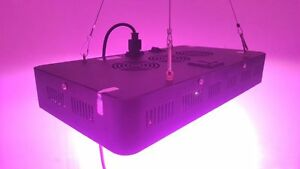 BRIGHT LED GROW LIGHTS -MINT Intenze FS-PRO800 (latest models)