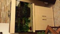aquarium 40 gallons avec meuble
