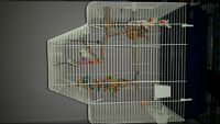 WONDERFUL Cage for Small Birds!
