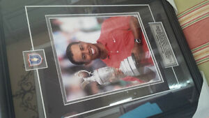Tiger Woods, 2006 British Open Champion