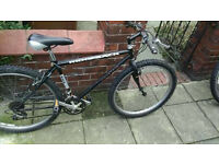 Men's Ridgeback mountain bike