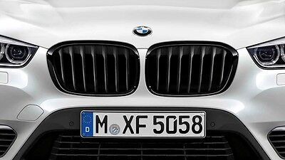 bmw x1 f48 frontgrill. Black Bedroom Furniture Sets. Home Design Ideas