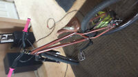 2011 Specialized P2 Cromo Wood Grain