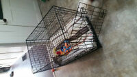 pet kennel great condition...black metal!