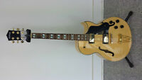 Archtop Electric Hollowbody Guitar with Case $250.00