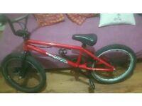 Coyote Bike - BMX type.