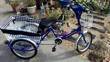 """""""TEBCO"""" ADULT ELECTRIC TRICYCLE. Rosebud West Mornington Peninsula Preview"""