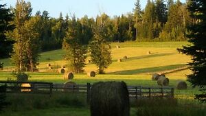 Hay Fields Available for 2017
