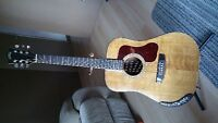 GUILD D25M acoustic /may trade for electric