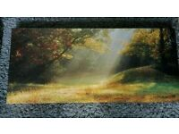 Various sized canvas pictures for sale
