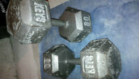80 lb. Dumbells - Free Weights