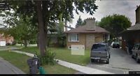 3 bedroom complete basement for rent $1450 all inclusive nov 1st