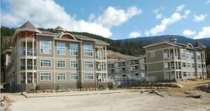 SICAMOUS - 2 BEDROOM 2 BATH furnished CONDO