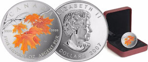 2001-2006 Coloured 1 oz Silver Maple Leaf Collector RCM Coins Edmonton Edmonton Area image 8