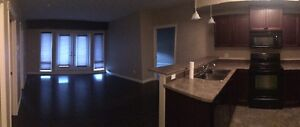 2 Bedroom 2 Bathroom Condo For Rent Available April 1st, 2017