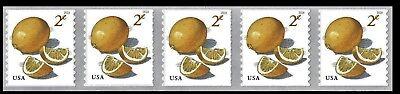 5256 2018  2C Meyer Lemons Pnc5  Pl  B11111   Mnh