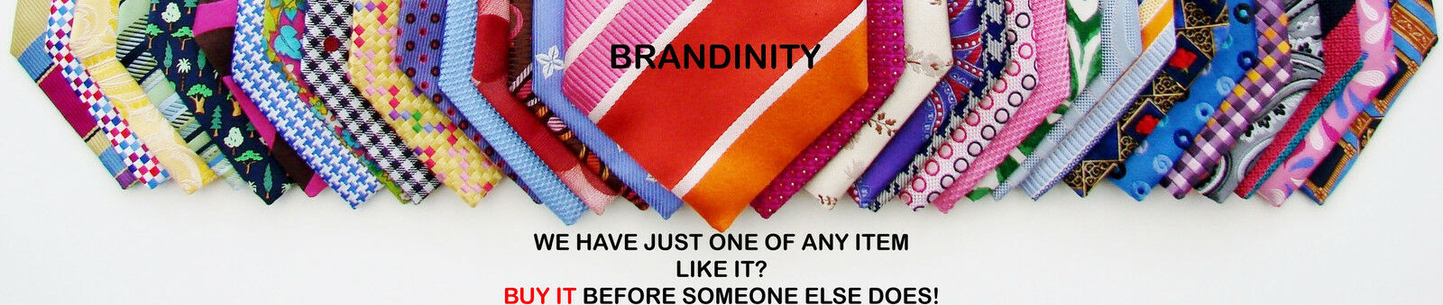 BRANDINITY