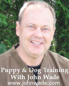 Puppy and Dog Obedience Training with John Wade