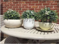 Neutral Three Plant Pots; White, Cream, Green