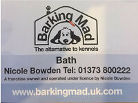 Dog care , Dog Lovers Wanted