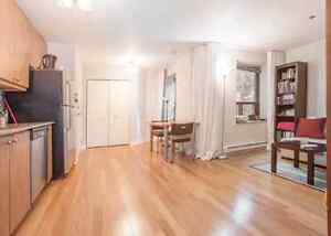 Beautiful 1 bedroom condo in the heart of downtown montreal