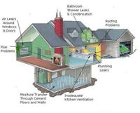 TORONTO ASBESTOS, MOLD INSPECTION AND TESTING
