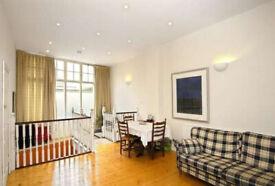 Large 1 bed flat over 2 floors (ground+basement) Fantastic location Essex Road N1