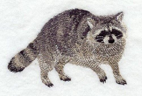 Embroidered Sweatshirt - Raccoon D1498