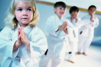 Wagner's Taekwondo (WTF) New Minas & Kentville (Kids and Adults)